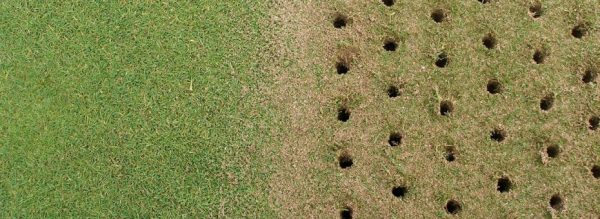 Core Aerating reduces soil density and allows more room for roots to grow.